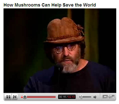 Paul Stamets ~ How Mushrooms Can Help Save The World