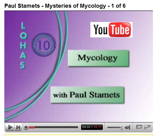 Paul Stamets ~ Mysteries of mycology